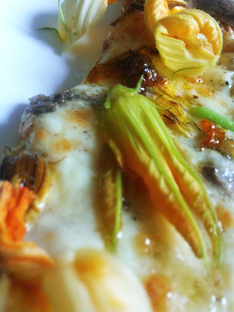 pizza blanche fleur de courgette mozza et anchois 3