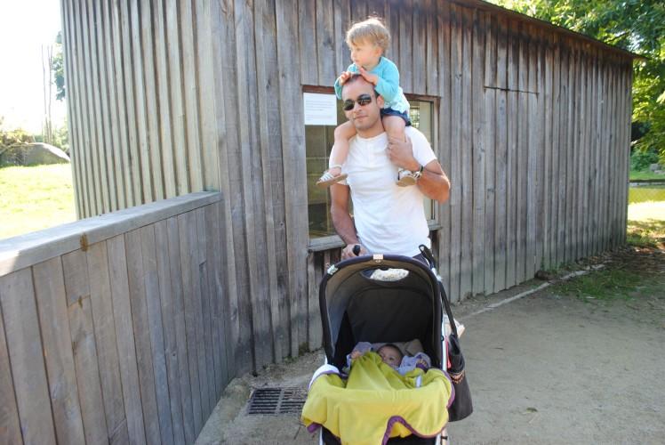 zoo de la bourbansais un papa deux enfants